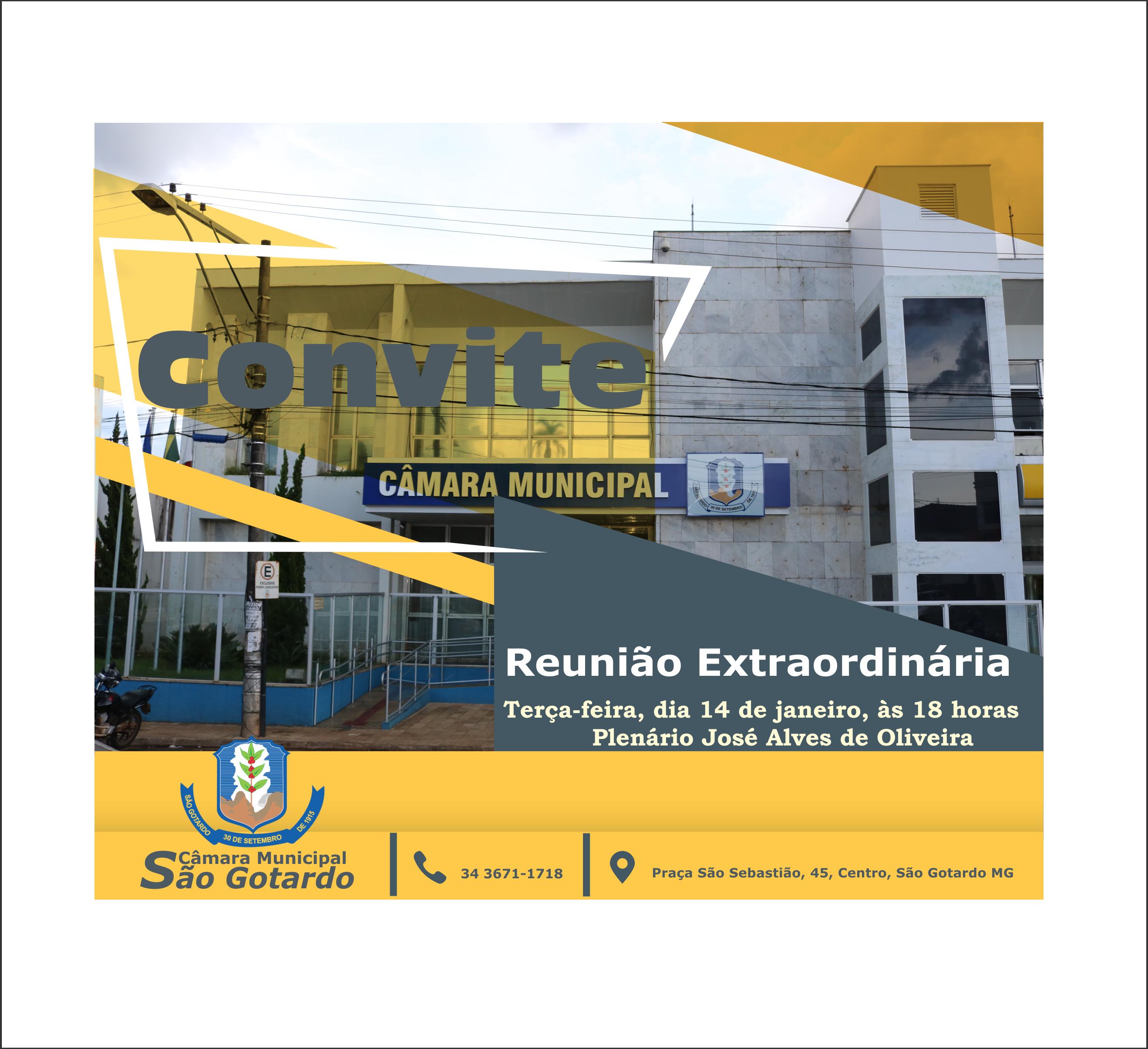 REUNIÃO EXTRAORDINÁRIA